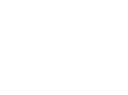 dpa-logo-footer